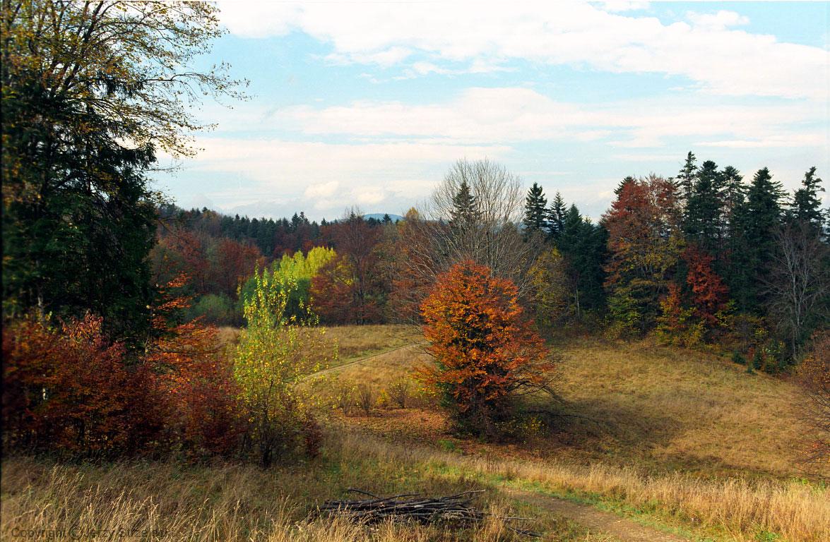 polskie krajobrazy jesień w pieninach